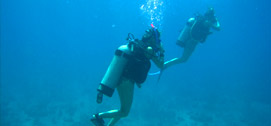 Belize Diving Adventures