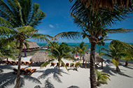 """""""Best of Both Worlds"""" 7 Night Jungle & Beach Vacation Package"""